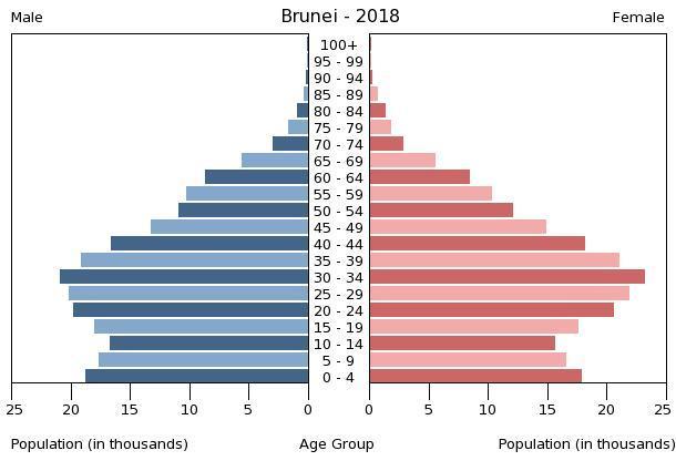 Bevölkerungspyramide 2018
