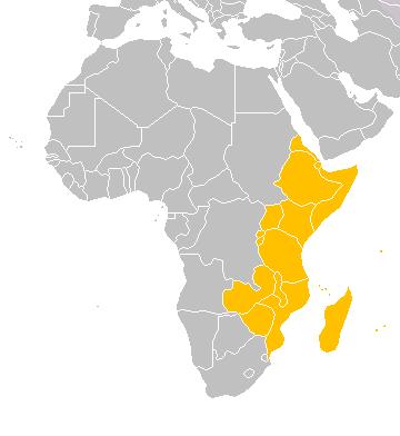 Schematische Karte Ostafrikaafrika