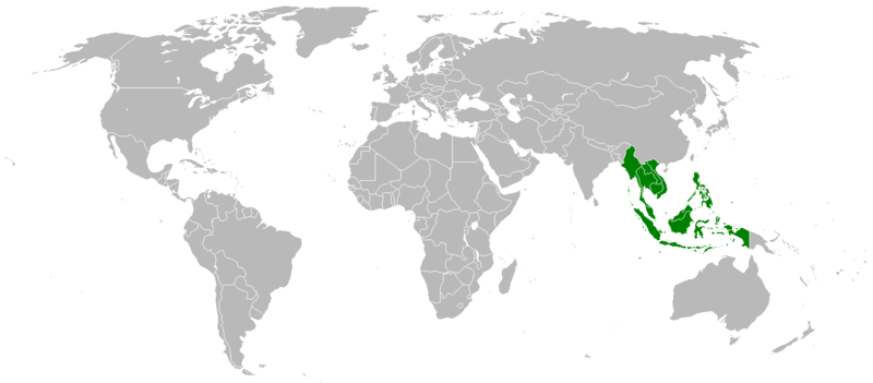 File:LocationSoutheastAsia.PNG