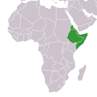 Datei:Africa-countries-horn.png