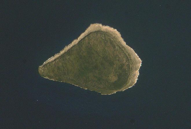 Satellitenbild Navassa